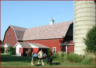 Dairy barn converted into a year 'round kennel